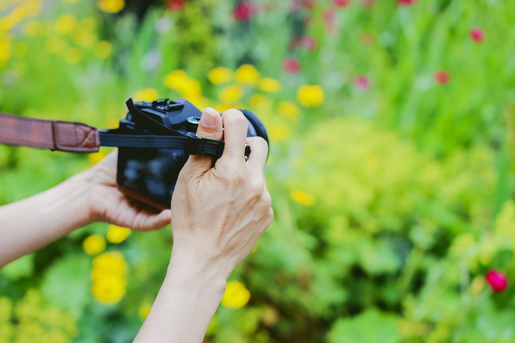 デジタルカメラで撮影